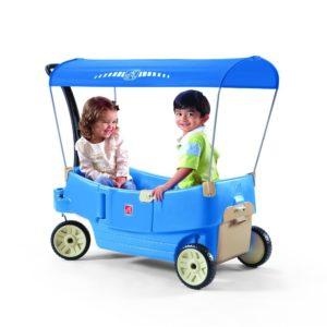 blauer bollerwagen